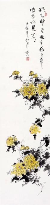 张晓雨 菊