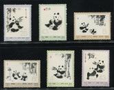 N57-62熊猫新全
