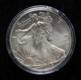 赵涌在线_钱币类_2013年美国鹰洋1盎司银币一枚