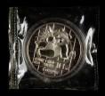 赵涌在线_钱币类_1989年熊猫1盎司普制银币一枚