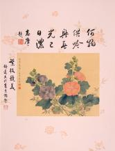 陆小曼 花卉