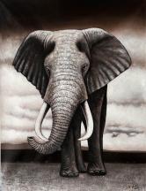 黄伟能(职业画家)大象