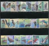 日本鸟类新26全