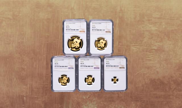 錢幣類_2019年熊貓普制金幣五枚一套(含1克、3克、8克、15克、30克、帶盒、帶證書、NGC MS70)